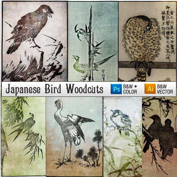 Japanese Woodcut Engravings of Birds - Color Images and Free Bird Vector Art